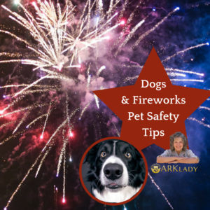 Dogs & Fireworks Pet Safety Tips