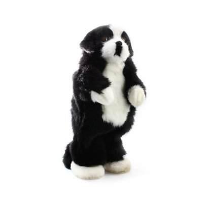 Party Animal Dog Speaker